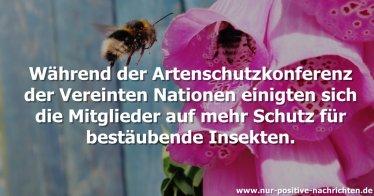 Uno beschließt: Mehr Schutz für bestäubende Insekten