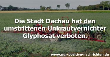 Dachau verbietet Glyphosat