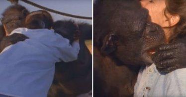 Affen Wiedersehen | Quelle: Youtube/argofilms