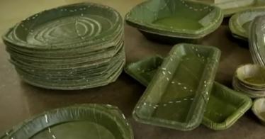 Kompostierbares Einweggeschirr aus Laubblättern (Video)