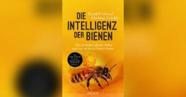 Die Intelligenz der Bienen: Wie sie denken, planen, fühlen und was wir daraus lernen können - Buchrezension
