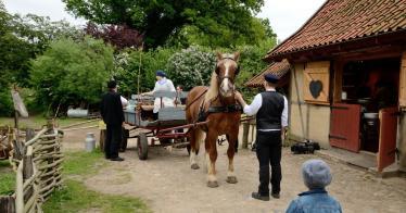 Schweiz: Bauernhof für Demenzkranke (Video)