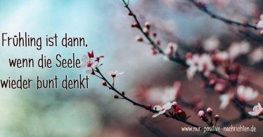 Frühling Spruch - inspirierende Sprüche zum Frühling