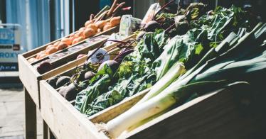 The Good Food: Deutschlands erster Supermarkt für aussortierte Lebensmittel