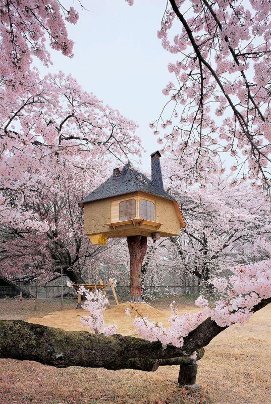 Teehaus Baumhaus Tesu, Yamanashi in Japan | Quelle: http://www.amazon.com/gp/product/3836526646?adid=173PMHE4Y2G5D4HNKCQN&camp=0&creative=0&creativeASIN=3836526646&linkCode=as4&ref_=as_li_ss_til&tag=bplin-20