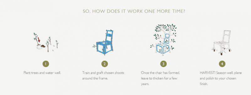 Positive Nachrichten   Quelle: http://fullgrown.co.uk/