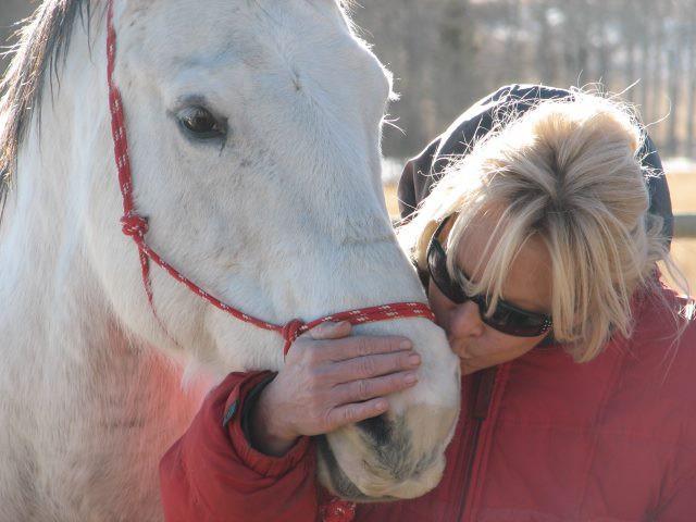 Brigitte trainiert Pferde