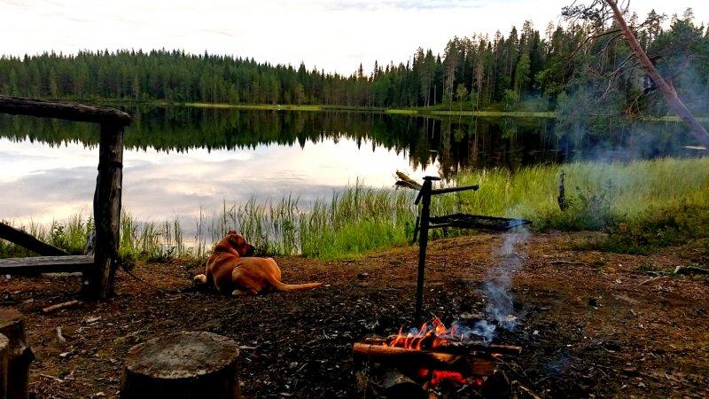 Rein ins Leben - Lagerfeuerromatik in Finnland