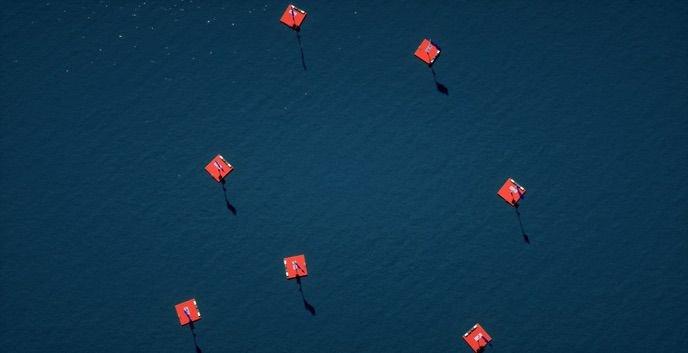 Positive Nachrichten Quelle: http://www.rettung-europas.at/