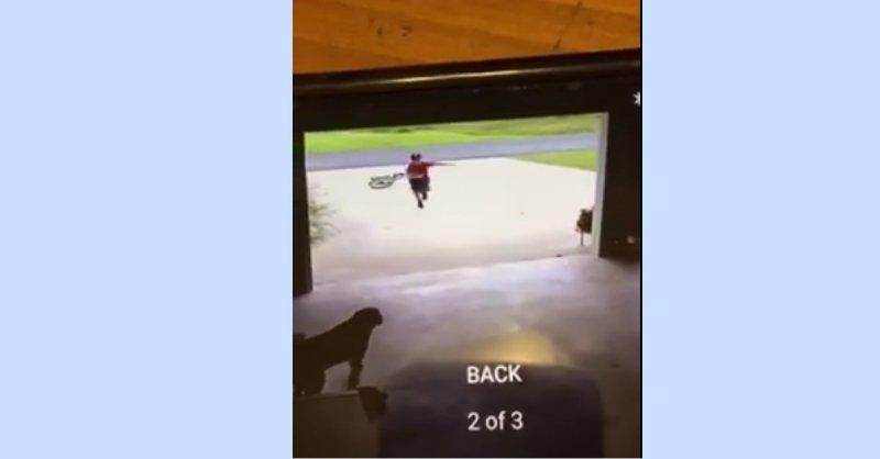 Junge läuft in die Garage um Hund zu umarmen | Quelle: https://www.facebook.com/hollie.mallet/videos