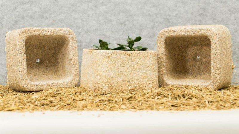 IKEA will kompostierbare Verpackungen aus Pilzfasern nutzen | Quelle: http://www.ecovativedesign.com/
