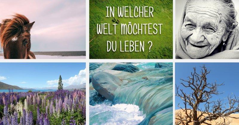 Gute Nachrichten auf nur positive Nachrichten. In welcher Welt möchtest Du leben? Fotos: Unsplash.com