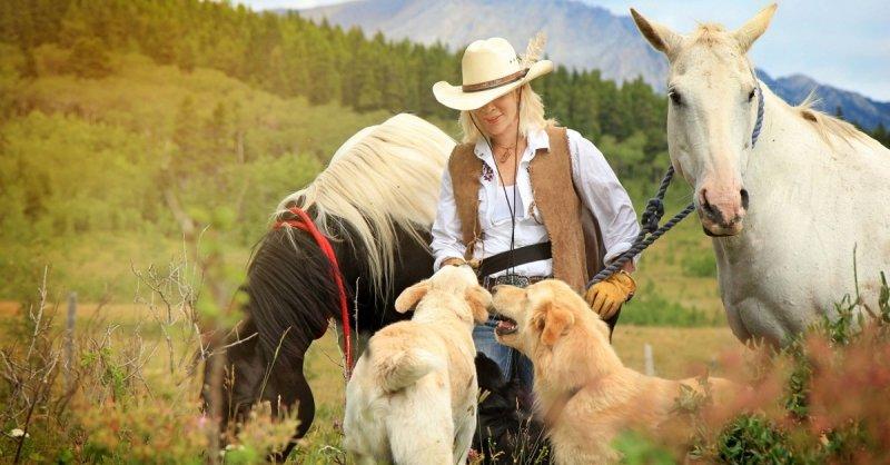 Gnadenhof in Kanada - Wie zwei deutsche Auswanderer hunderte Tiere und Menschen retten