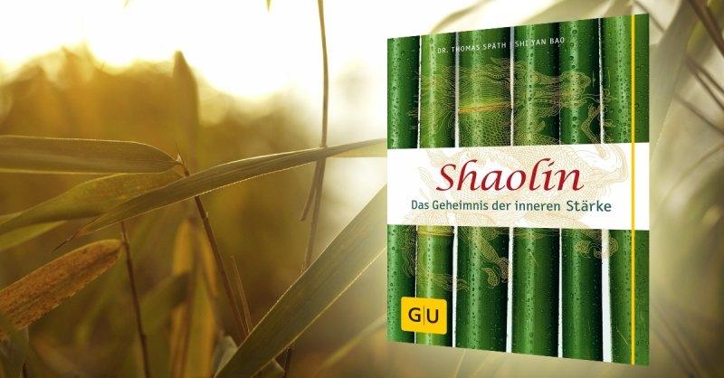 Shaolin - Das Geheimnis der inneren Stärke - Buchrezension