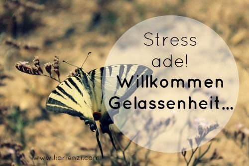 Willkommen Gelassenheit - das beste Werkzeug gegen Stress