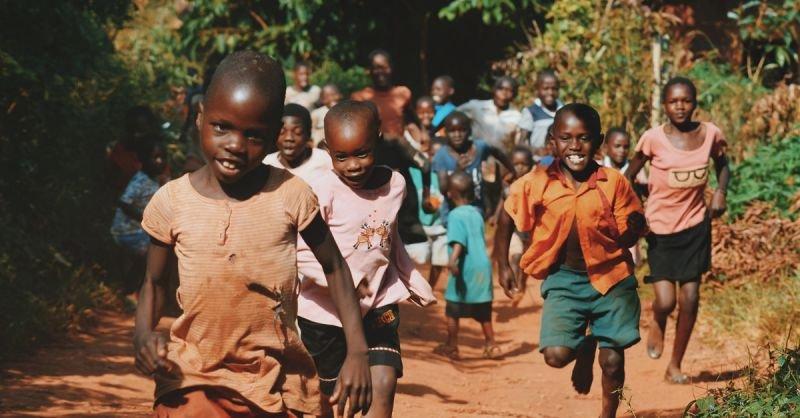 Malaria Erkrankungen gehen zurück | Bilderquelle: Seth Doyle | Unsplash