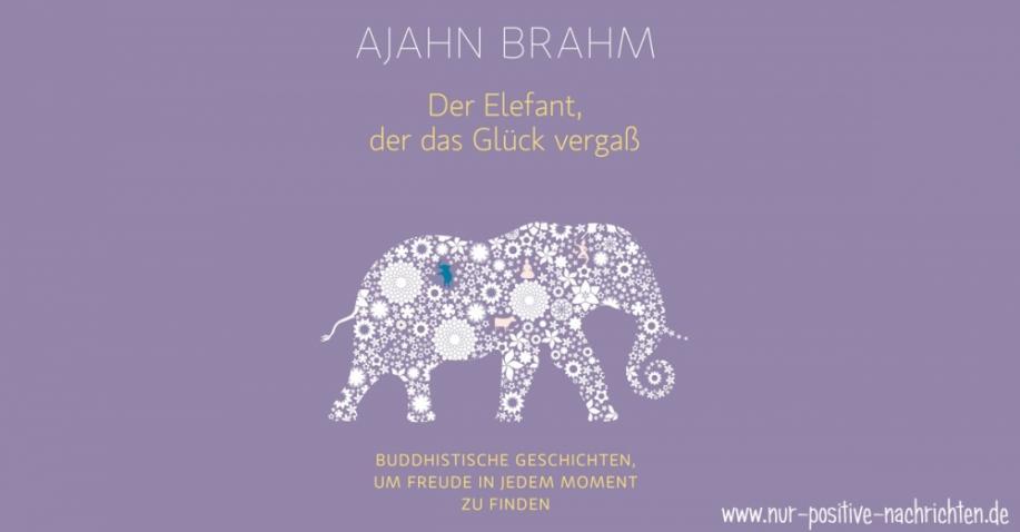 Der Elefant, der das Glück vergaß - Buddhistische Geschichten, um Freude in jedem Moment zu finden - Buchrezension