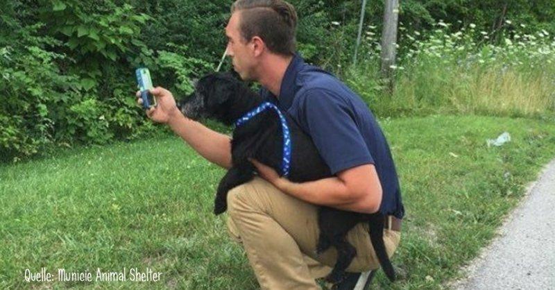 Beim Pokemon Go spielen Hunde aus Tierheim Gassi führen | Quelle: https://www.facebook.com/MuncieAnimalShelter/